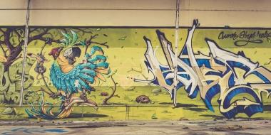 Graffiti - Nancy - Vincent-Zobler | Photographe à Nancy-2