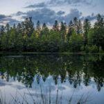 Lac de la Maix Reflection