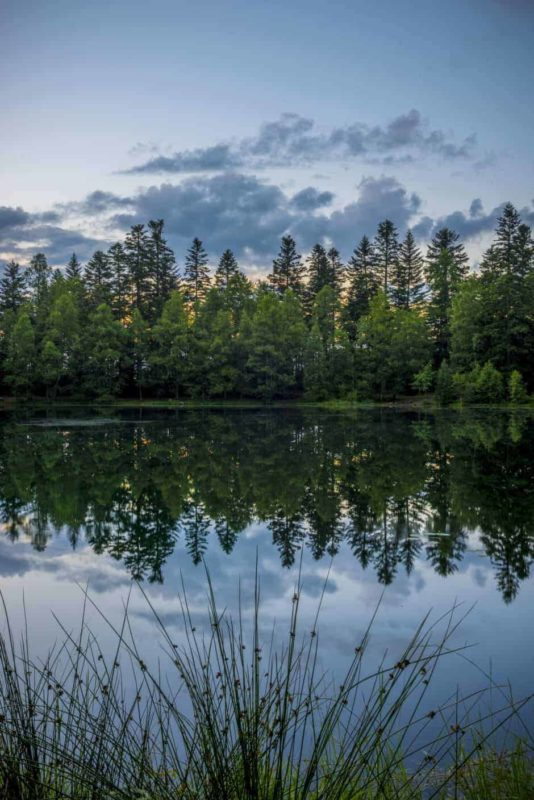 Lac de la Maix Reflection