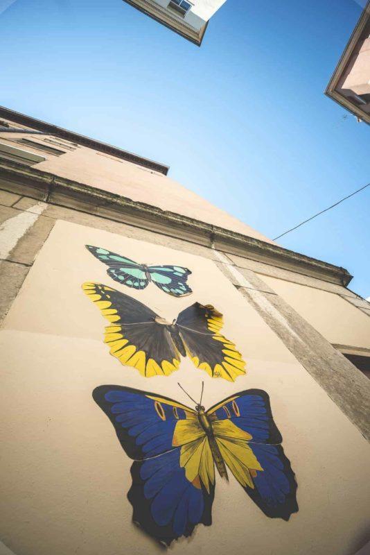 Lyon : The Street